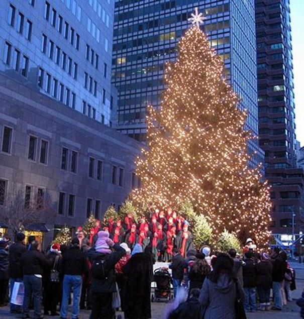 Christmas Tree In Ny: Merry Christmas, New York City