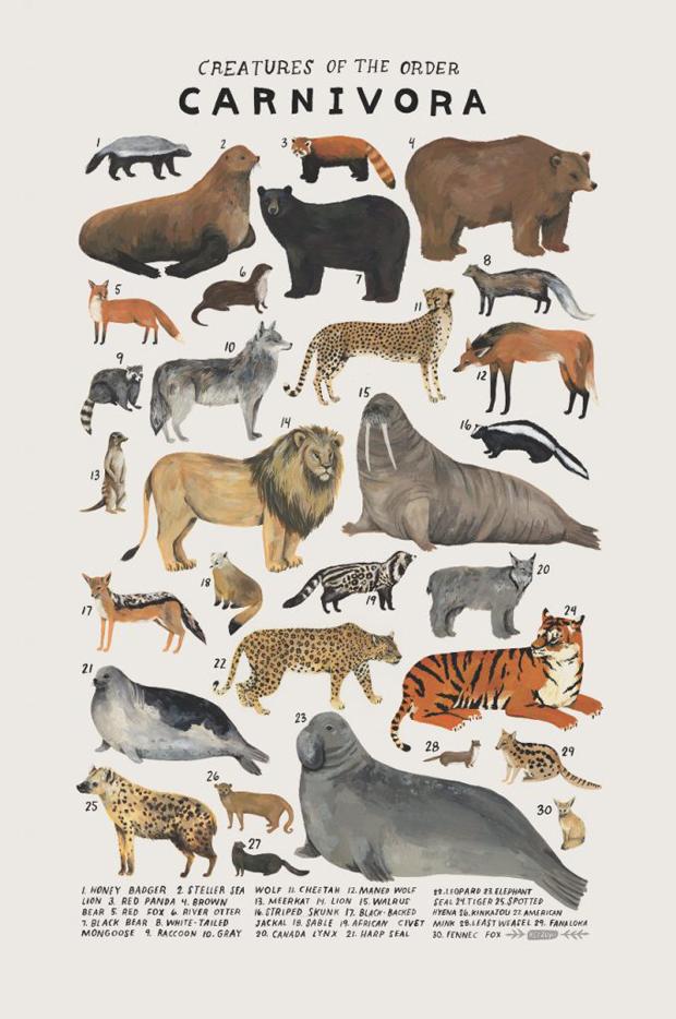 kelsey-oseid-kelzuki-animal-art-print-2