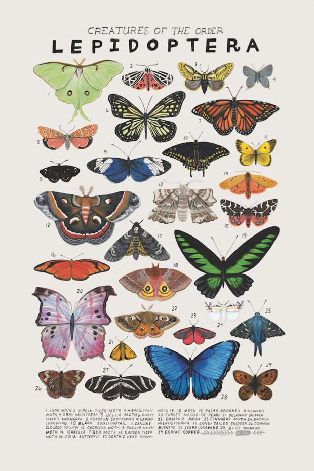 kelsey-oseid-kelzuki-animal-art-print_8