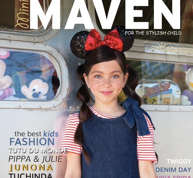 mini-maven_cover